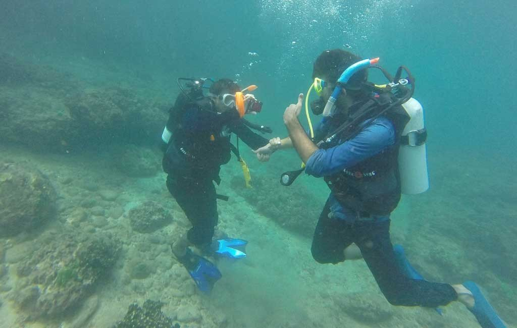 scuba dive at grand island goa price