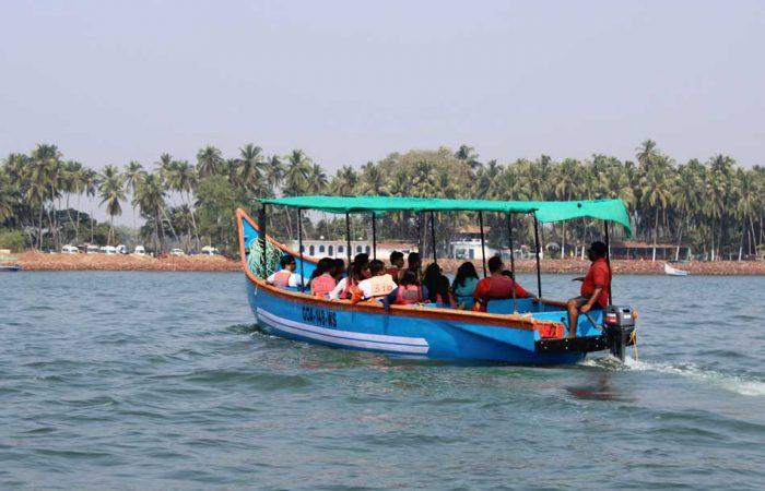 dolphin-boat-safari-goa